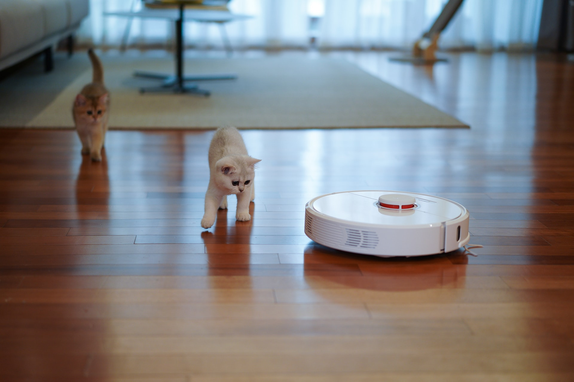 robot vs traditional vacuum